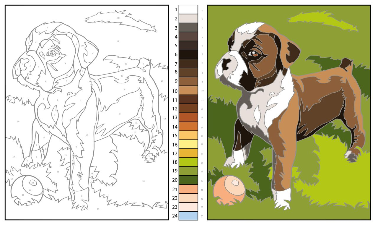 Pin by Diego Tapié on Coloring by numbers: \