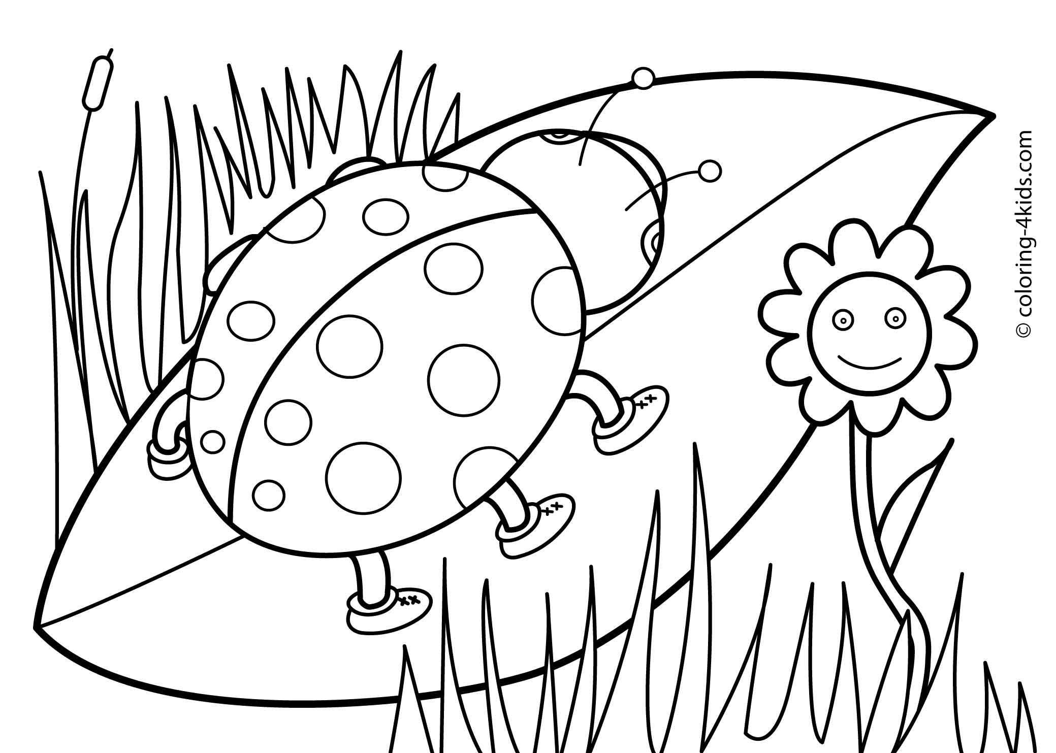 Coloring Pages Prek Coloring Pages 1000 images about coloring pages on pinterest frozen and ice cream pages