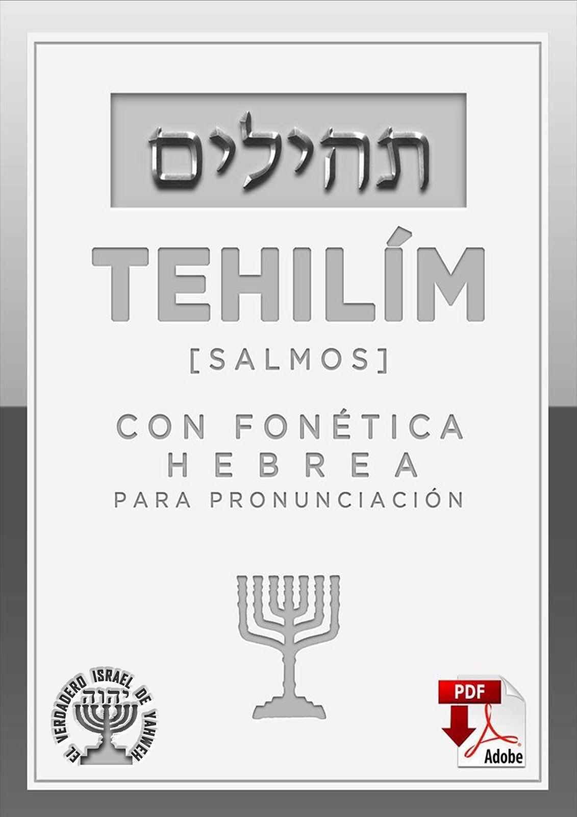 Biblia Kadosh Israelita Mesianica Salmos Libro De Los Salmos