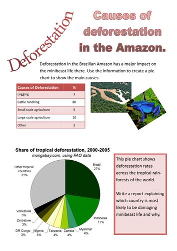 KS3 | Rainforests | Teachit Geography