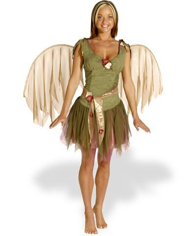 6 Cheap Womens Fairy Costumes Ideas- Fairy, Pixie, Or Nymph ...