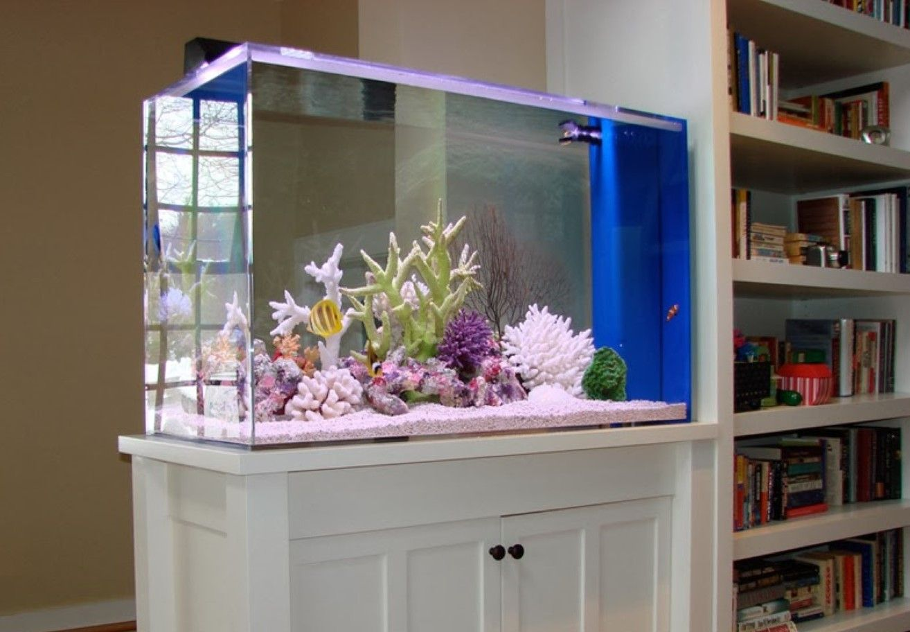 Transform The Way Your Home Looks Using A Fish Tank House