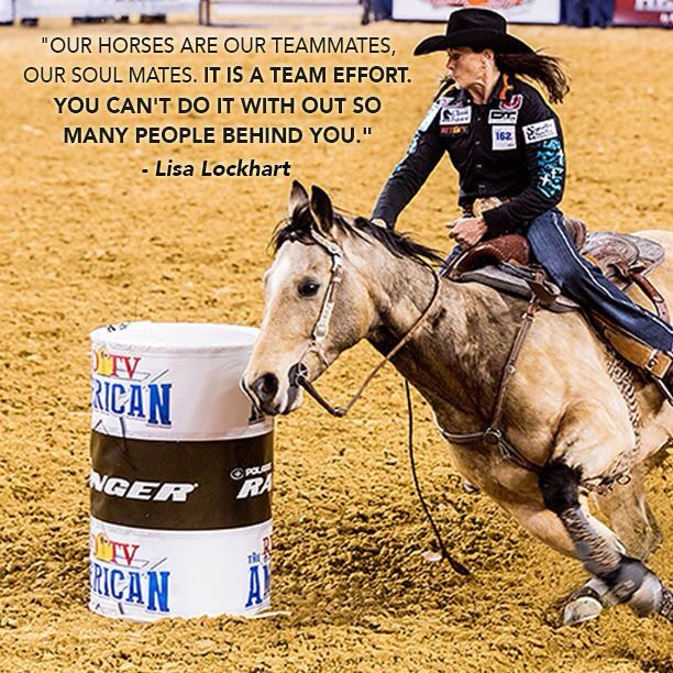THE AMERICAN on Barrel racing quotes, Barrel racing