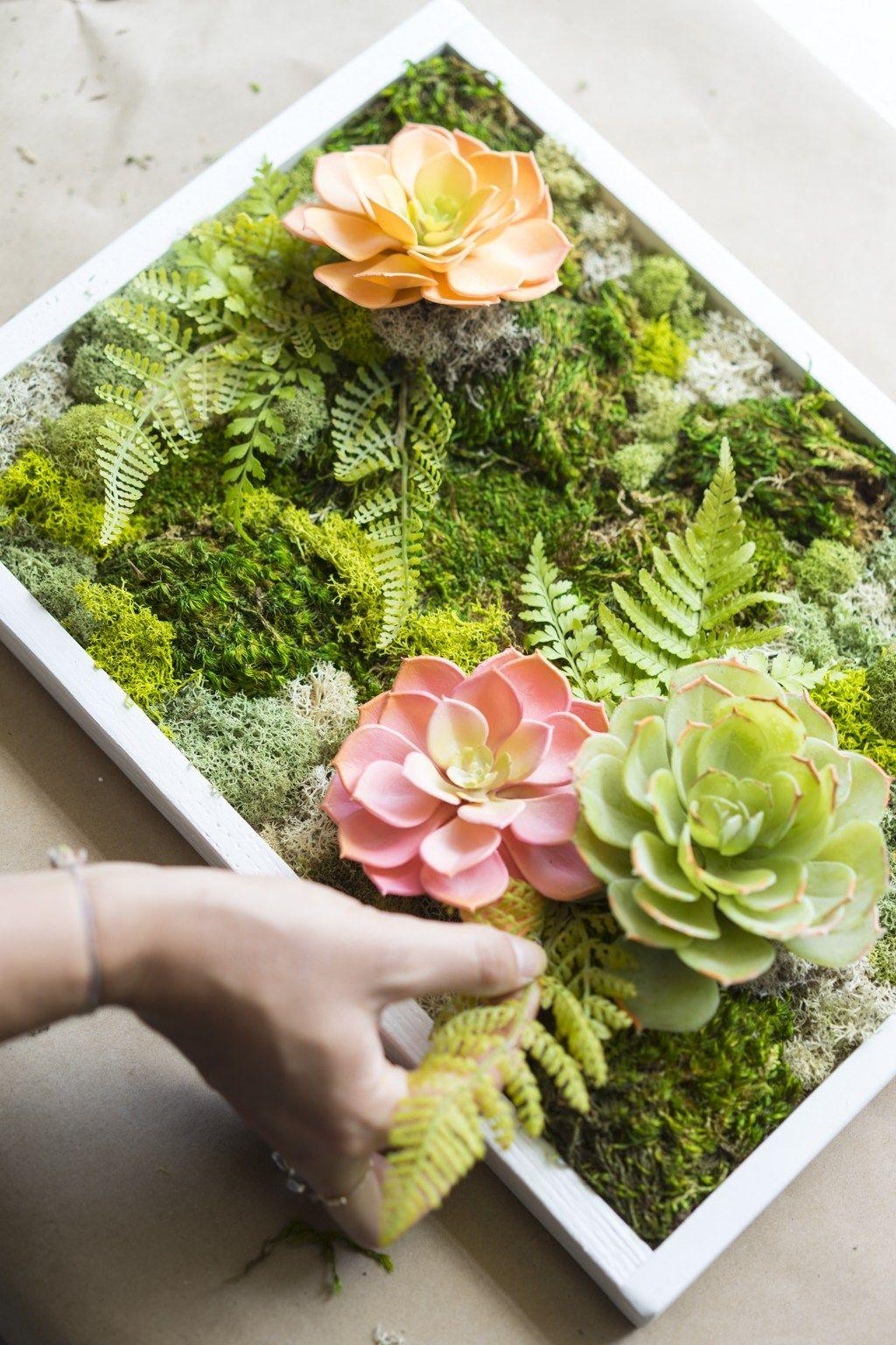 How to make a carefree moss garden dalla vita in 2020
