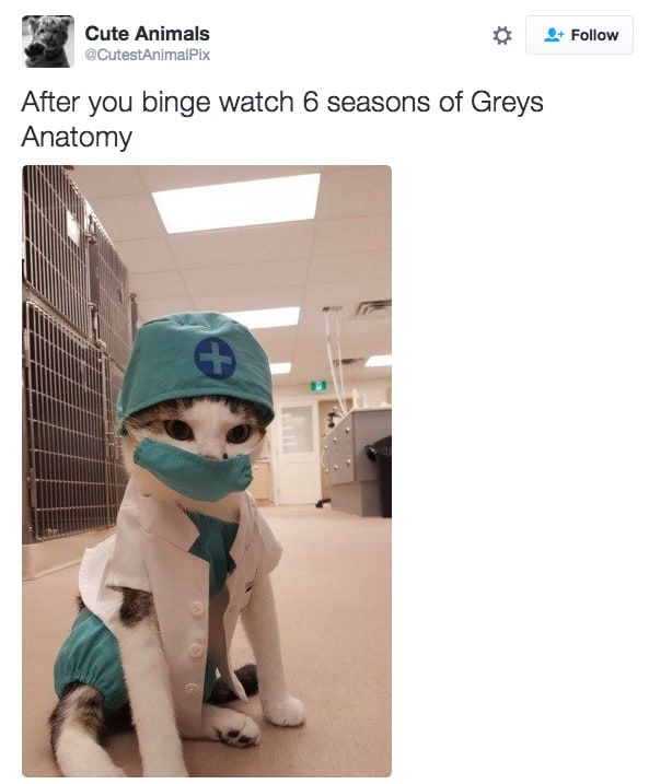 """Worst 50 Shades Of Grey Quotes: 23 Hilarious Tweets That Are Way Too Real For """"Grey's"""