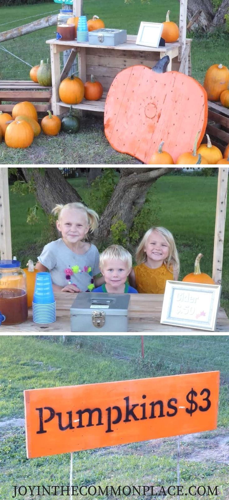 Set up a Pumpkin Stand and Sell Pumpkins by the Roadside