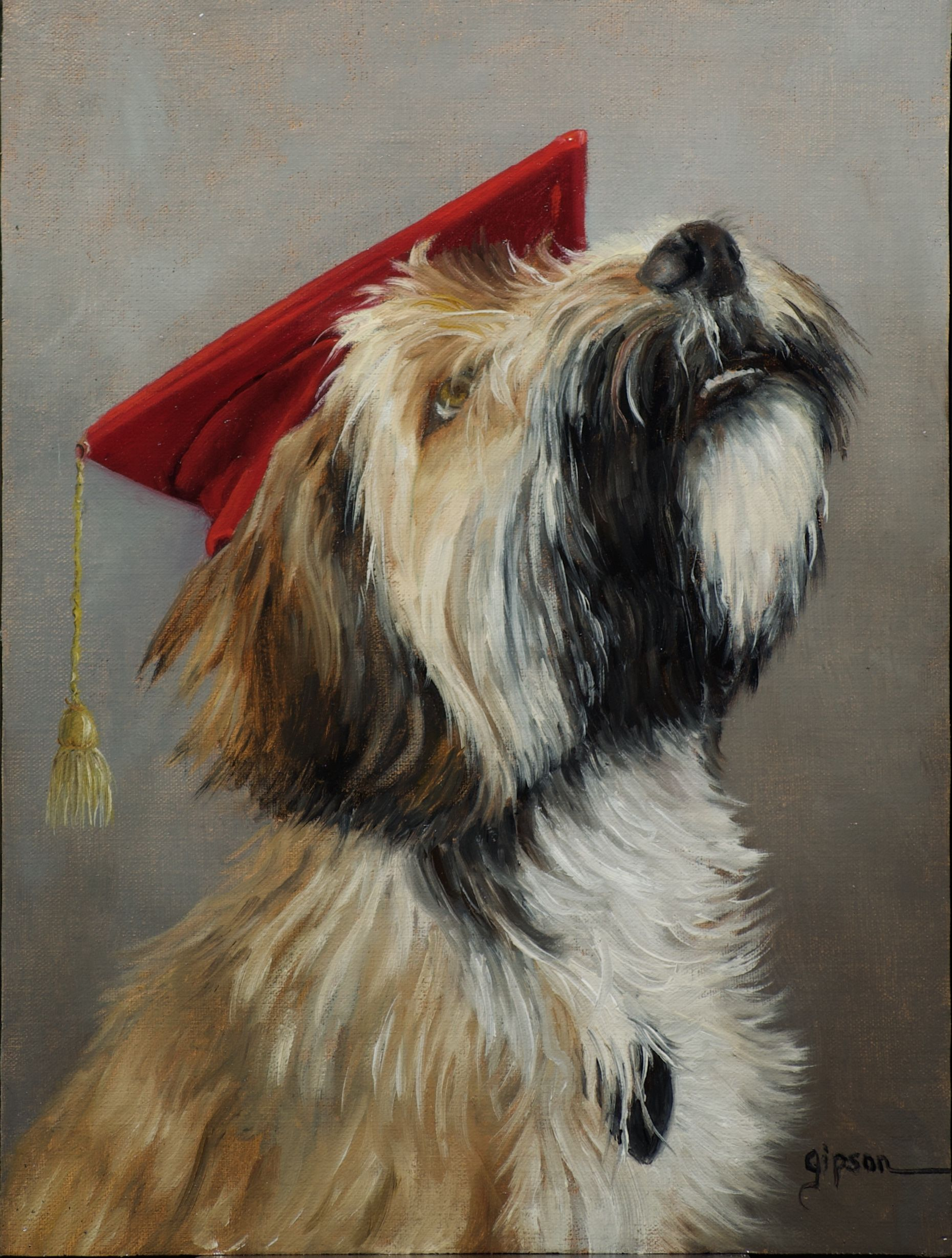 This Is An Adorable Tibetanterrier Puppy Doglovers Dogtraining Dogs Pet Portraits Westminster Dog Show Dog Heaven