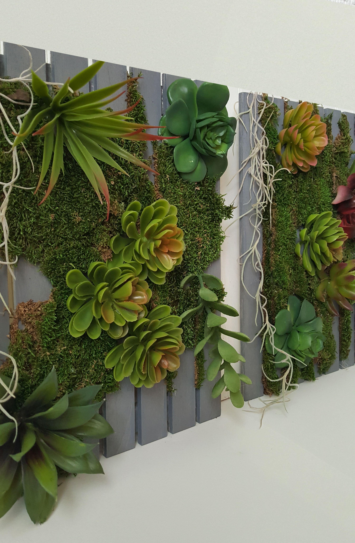 15 best succulents living walls ideas for indoor vertical on indoor vertical garden wall diy id=20153