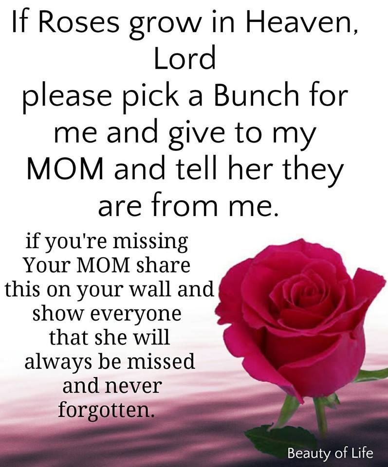 For Those Who Miss Their Mother Quotes Quote Mother Quotes Mom Quotes I Miss You Mom Missing Mo Happy Mother Day Quotes Miss You Mom Happy Mothers Day Pictures