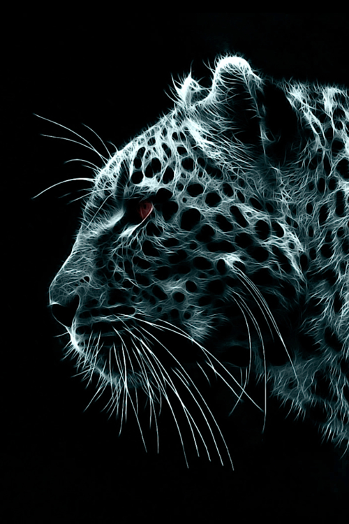 Devotion Passion And Sensuality Portu666 Cracked Galaxy Amazing Leopard Wallpaper Snow Leopard Wallpaper Animals