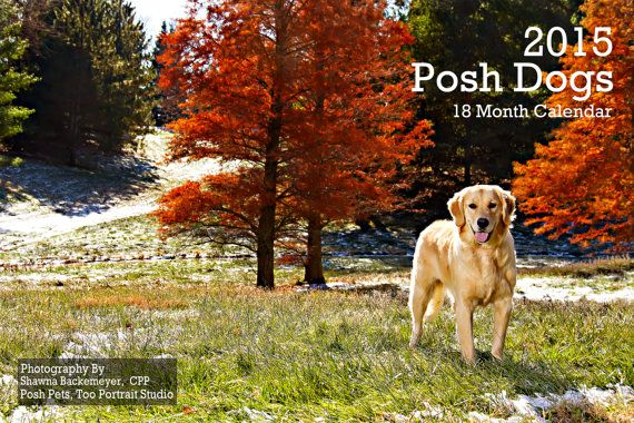 2015 Dog Calendar featuring Posh Dogs that will warm your heart!  18-month full color calendar featuring portraits of our loyal furry friends.  A portion of the proceeds from each sale will be donated to the rescue of your choice.