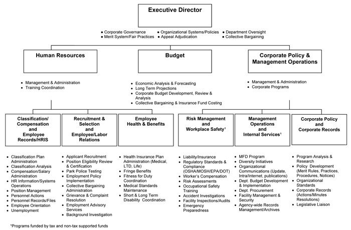 Department Of Human Resource Organization Chart  Business