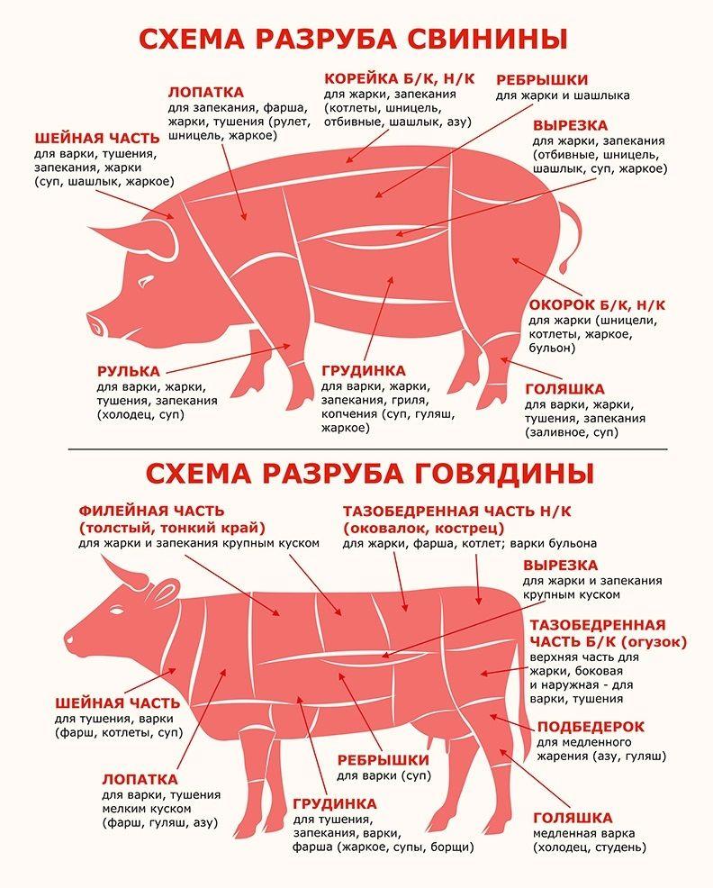 этом части мяса свинины картинки этот брак продержался