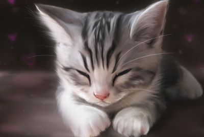 眠る子猫 イラストの壁紙 壁紙キングダム Pc デスクトップ版