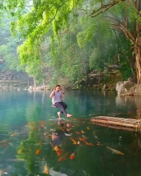 Swing above a natural koi fish lake at Telaga Biru