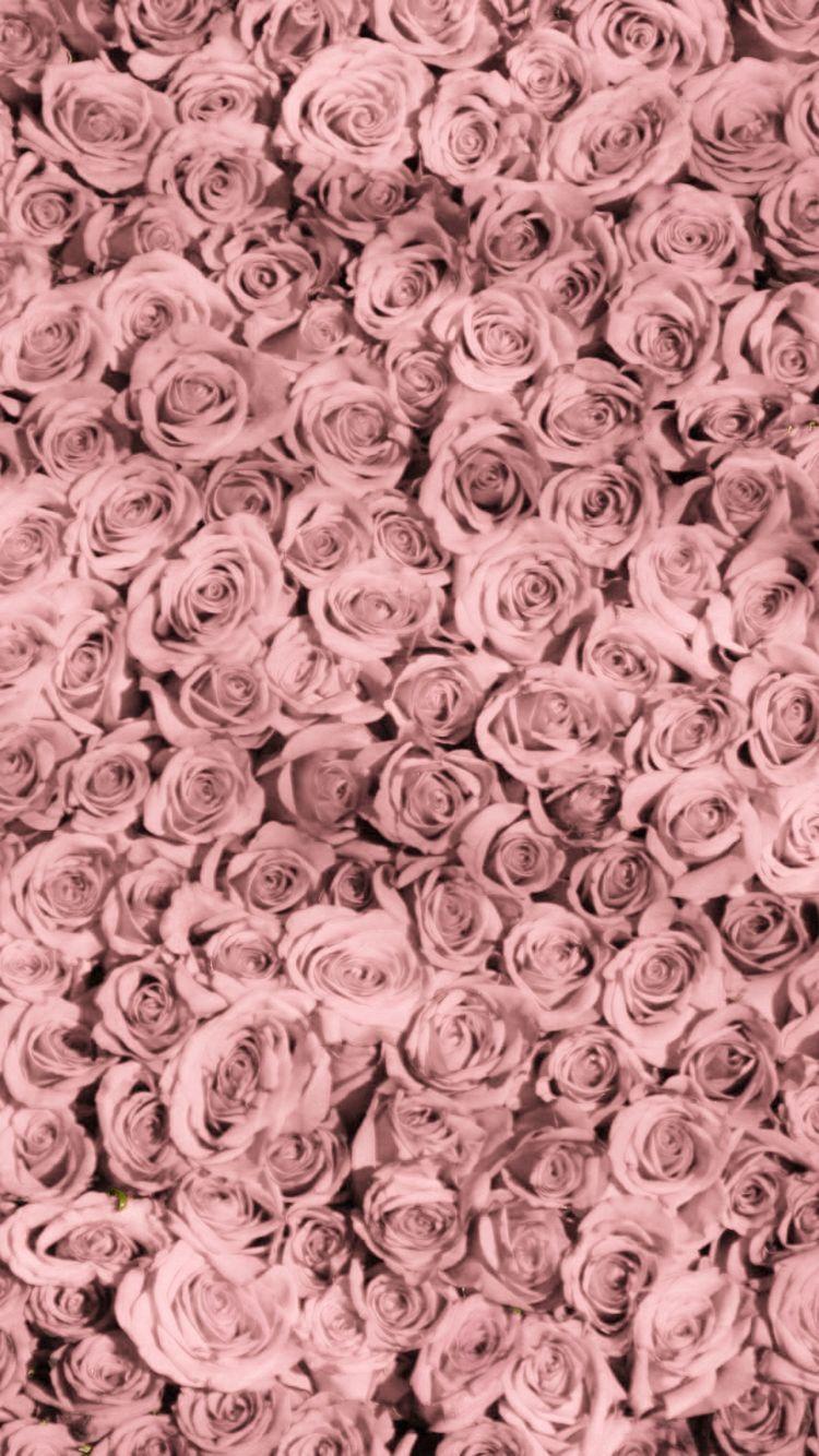 Pin By Doris Vorndran On Wallpaper Iphone Wallpaper Vintage Rose Wallpaper Pink Wallpaper Design