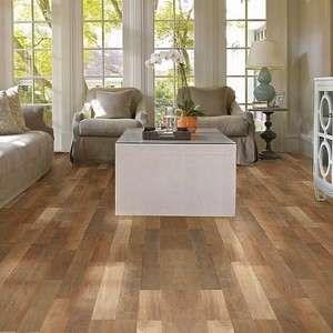 Buy SL305 Landscapes Plus Shaw Floors Laminates at Carpet Bargains