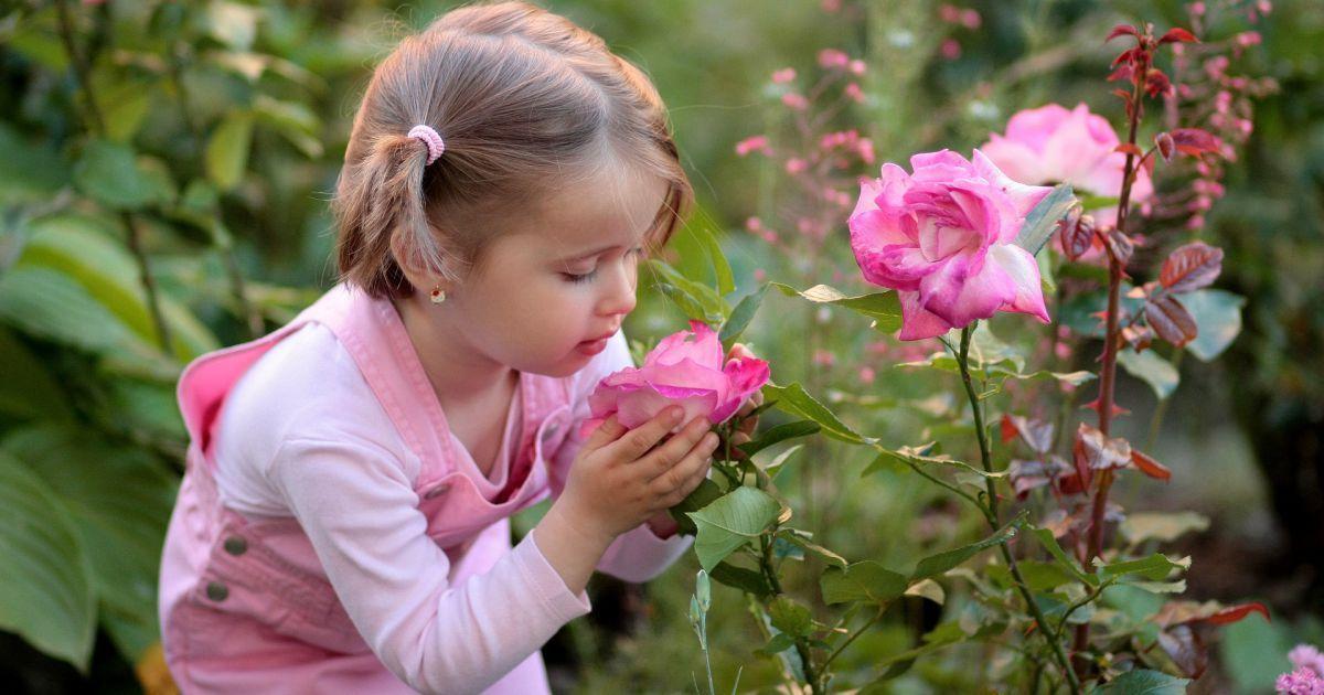 Dicas para quem convive de perto com crianças cristal | SAPO Lifestyle