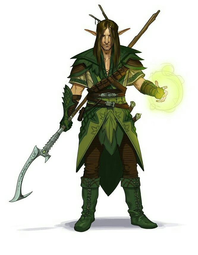dungeons and dragons druid guide