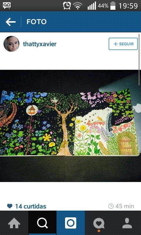 #EnchantedForest #jardimsecreto #secretgarden #florestaencantada #johannabasford