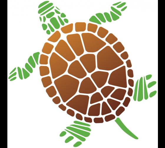 Stickers Tortue Marine Partir De 15 Stickers Muraux Pinterest