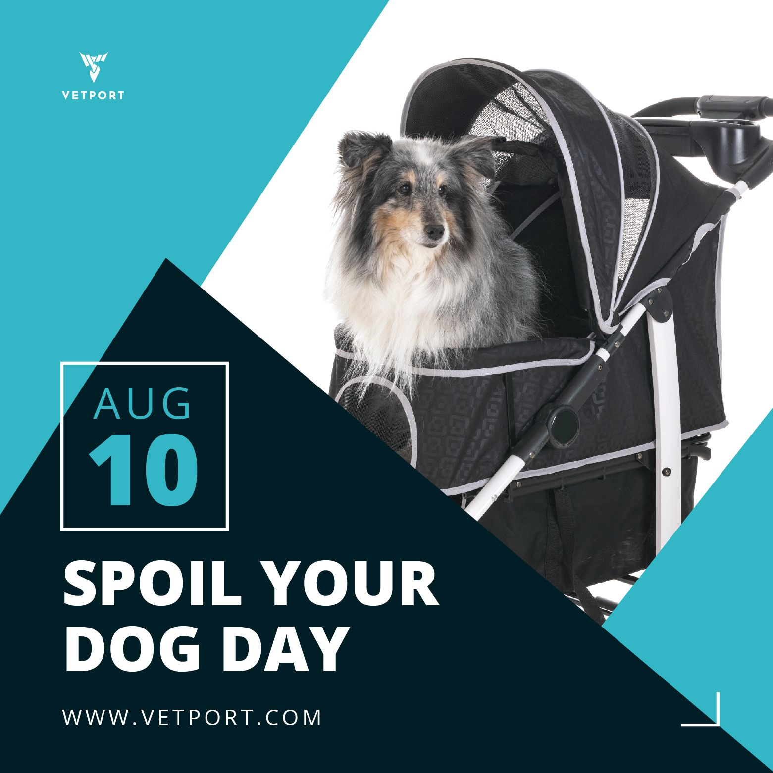 National Spoil your Dog Day August 10, 2019