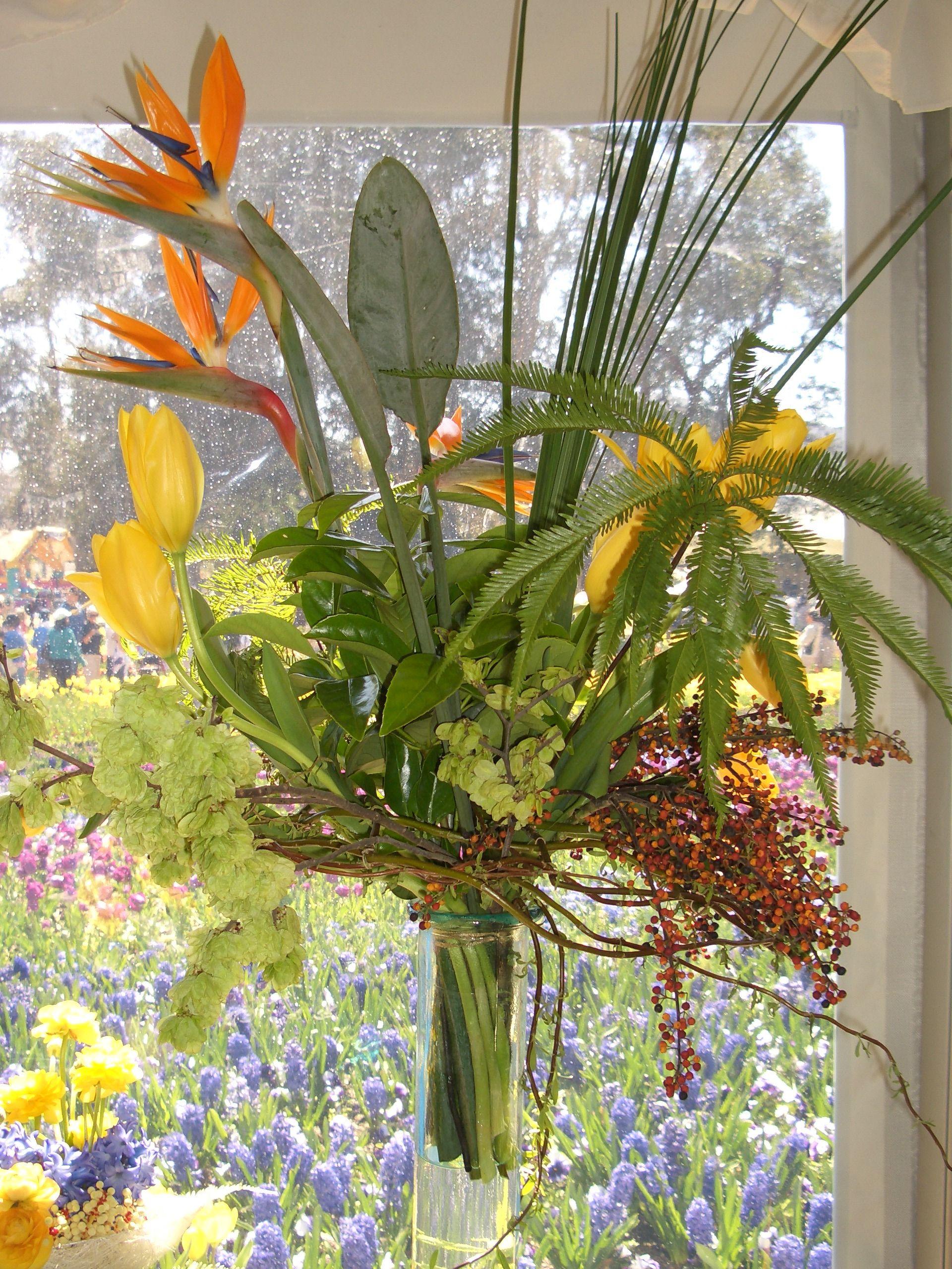 Canberra Floriade Arrangements Pinterest