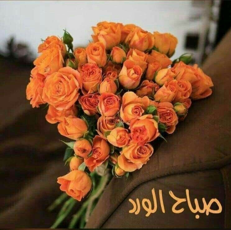 Pin By Anmol On Urdu Morning Flowers Floral Wreath Rose