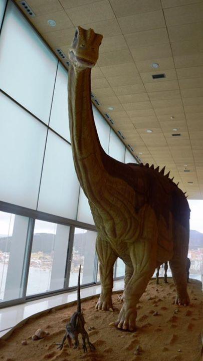Exposición En El Museo De Paleontología De Cuenca Museos Exposiciones Paleontología