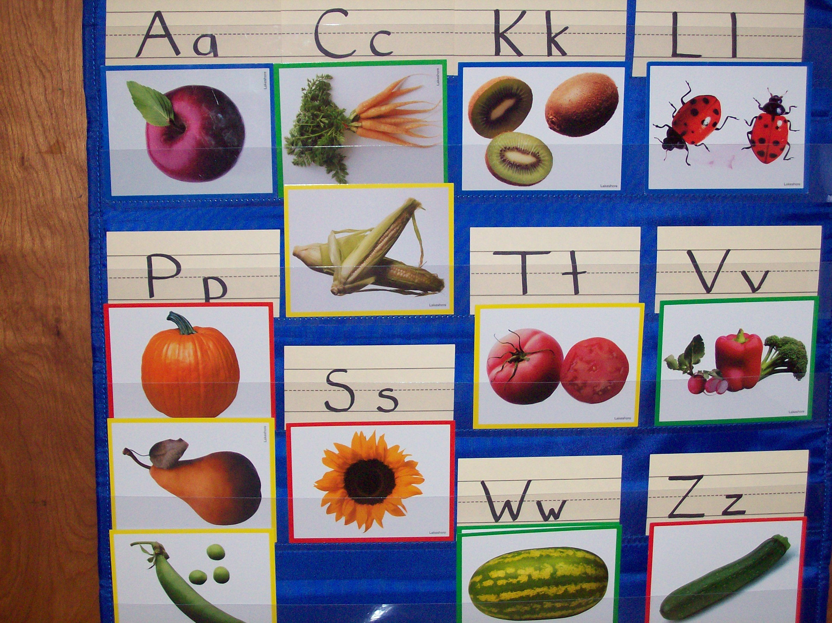 Letter Sound Identification With The Pocket Chart