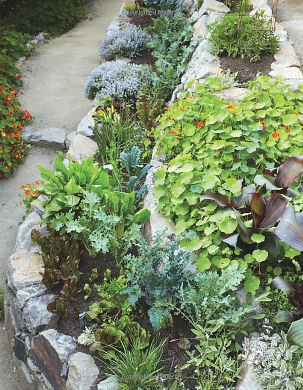 The Beautiful Edible Garden Design A Stylish Outdoor Space Using Vegetables Fruits And Herbs Lesli Edible Garden Edible Landscaping Garden Landscape Design