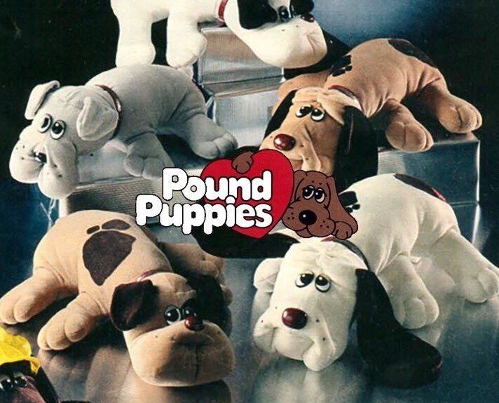Pound Puppies Image By Teresa On The Good Old Days Childhood Memories My Childhood Memories