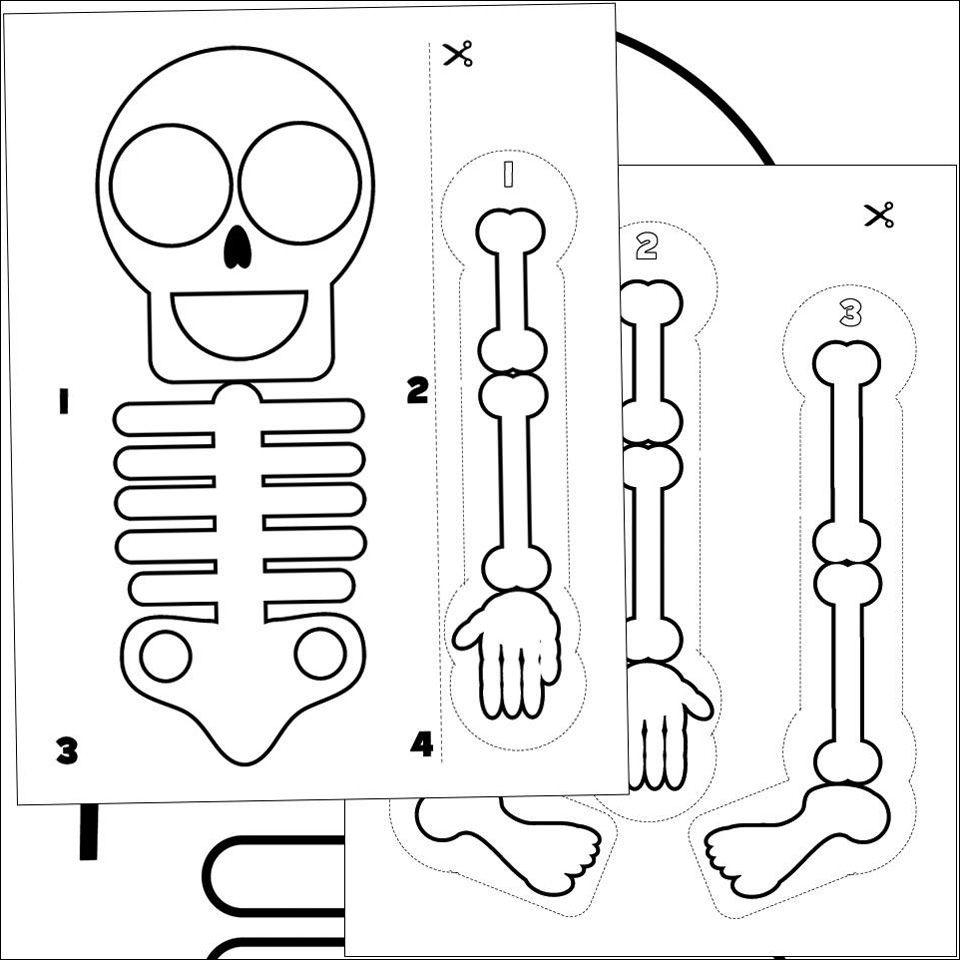 free printable skeleton halloween activity