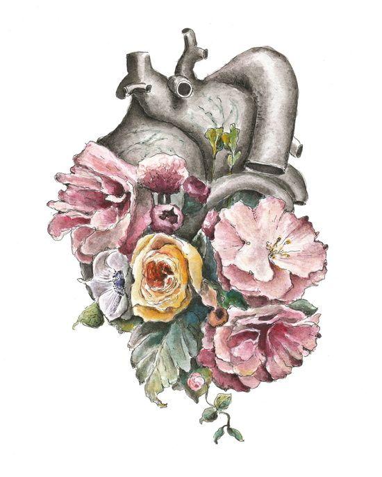 Floral Anatomy Heart Art Print   art   Pinterest   Heart art ...