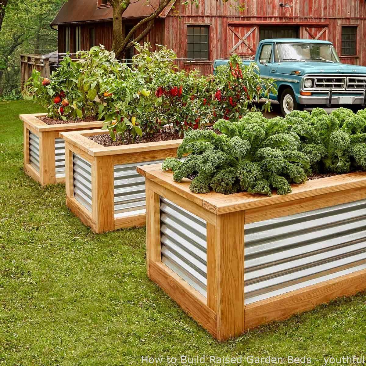 Gardening How To Build Raised Garden Beds Youthful Bedgardenideas Dyiraisedgardenb In 2020 Erhohte Gartenbeet Pergola Bauen Erhohte Beete