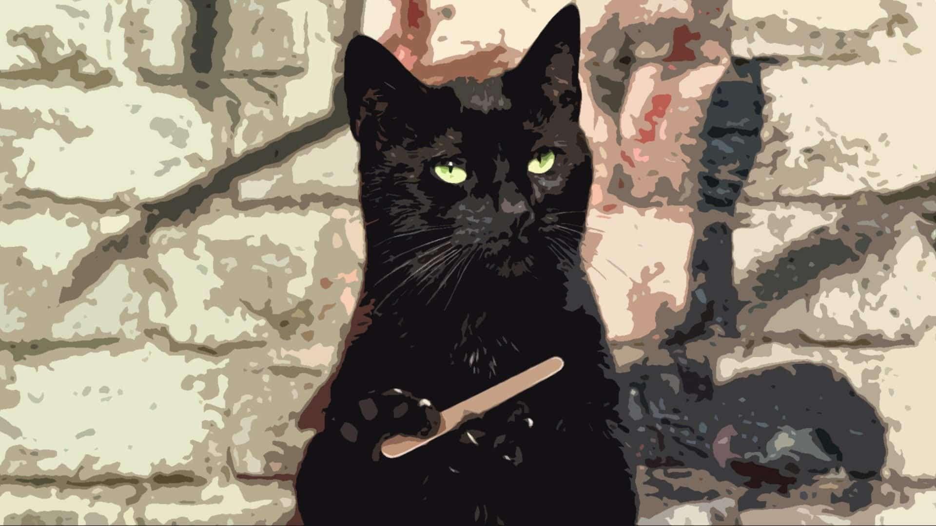 6 Animaux Humour 6 Humor Animals Voyage Onirique En 2020 Peinture De Chat Noir Fond D Ecran Chien Peinture Chat