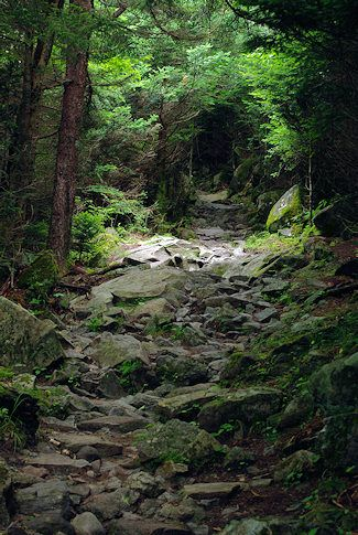 Rustic Life #hikingtrails