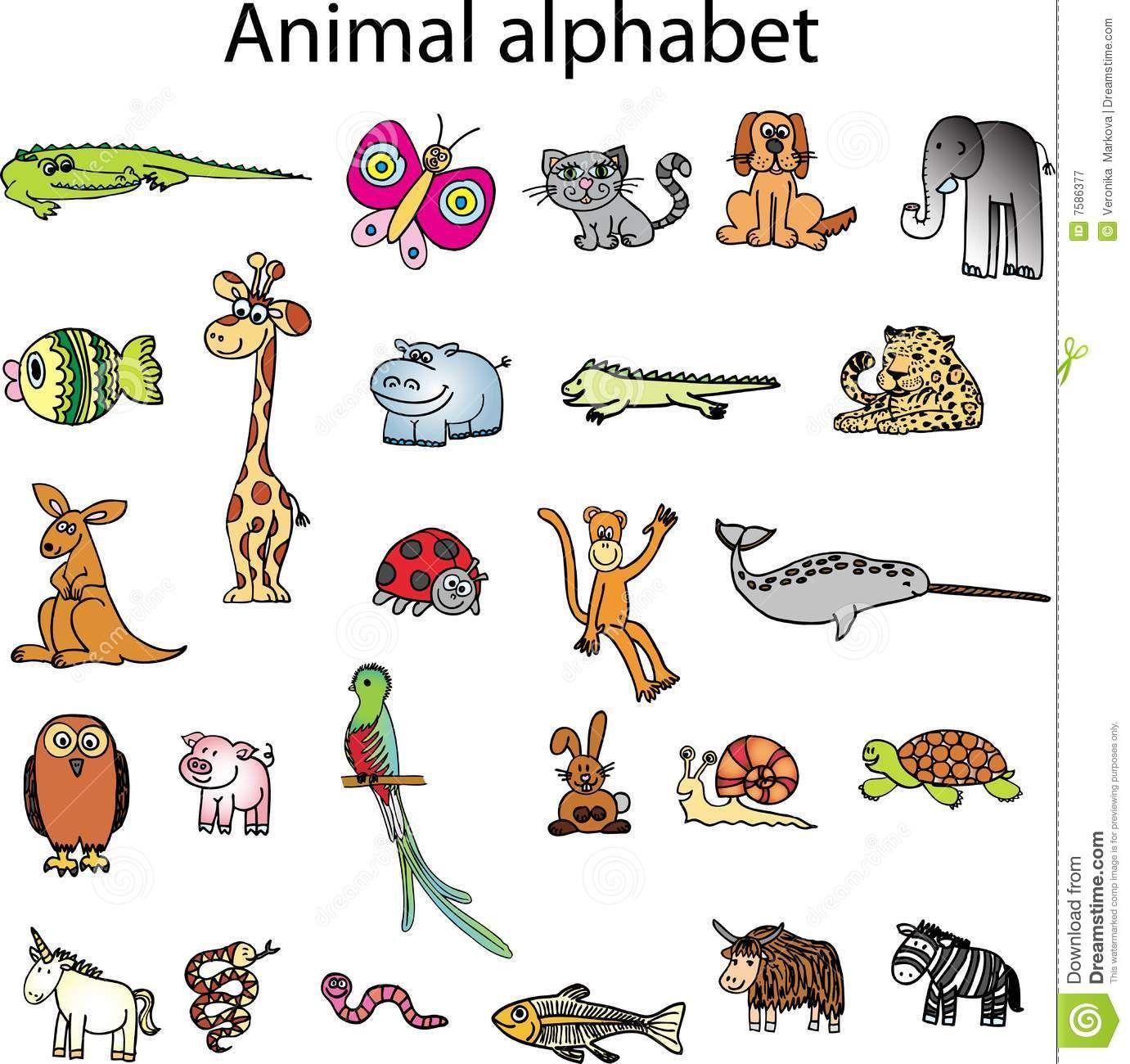 Animals From Animal Alphabet Royalty Free Stock Photography Image 7586377 Animal Alphabet Illustrations Kids Vector Illustration