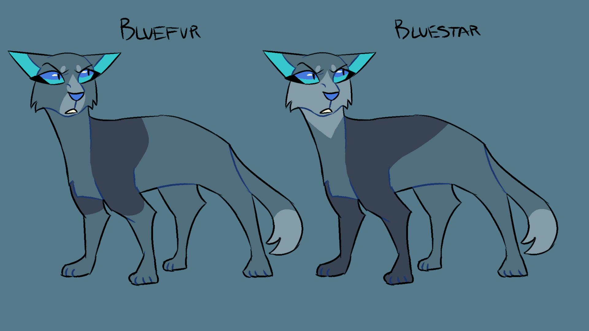 Bluefur Bluestar Designs For The Pmv Warrior Cats Art Warrior