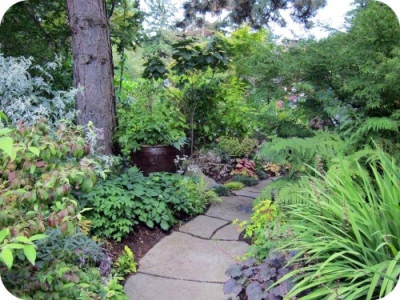 Heavy Petal Pacific Northwest In Pacific Northwest Landscaping Ideas Shade Garden Northwest Landscaping Native Garden