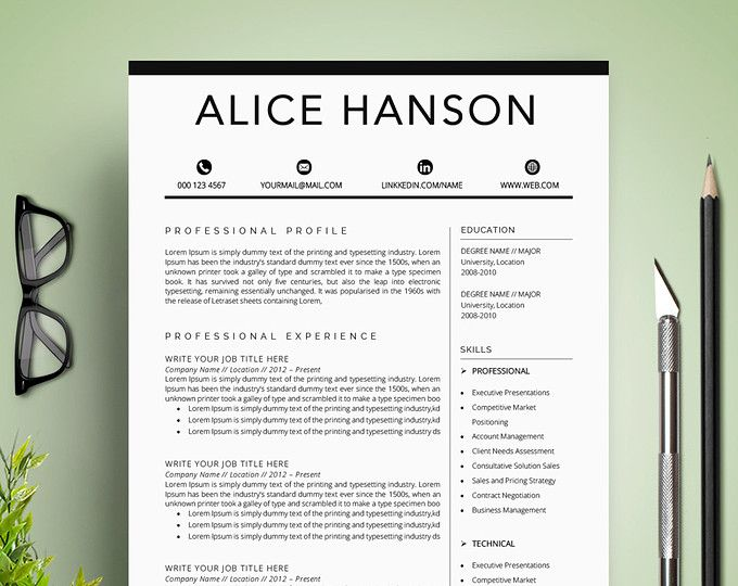 Creative Business Professional Resume Template for MS Word Color