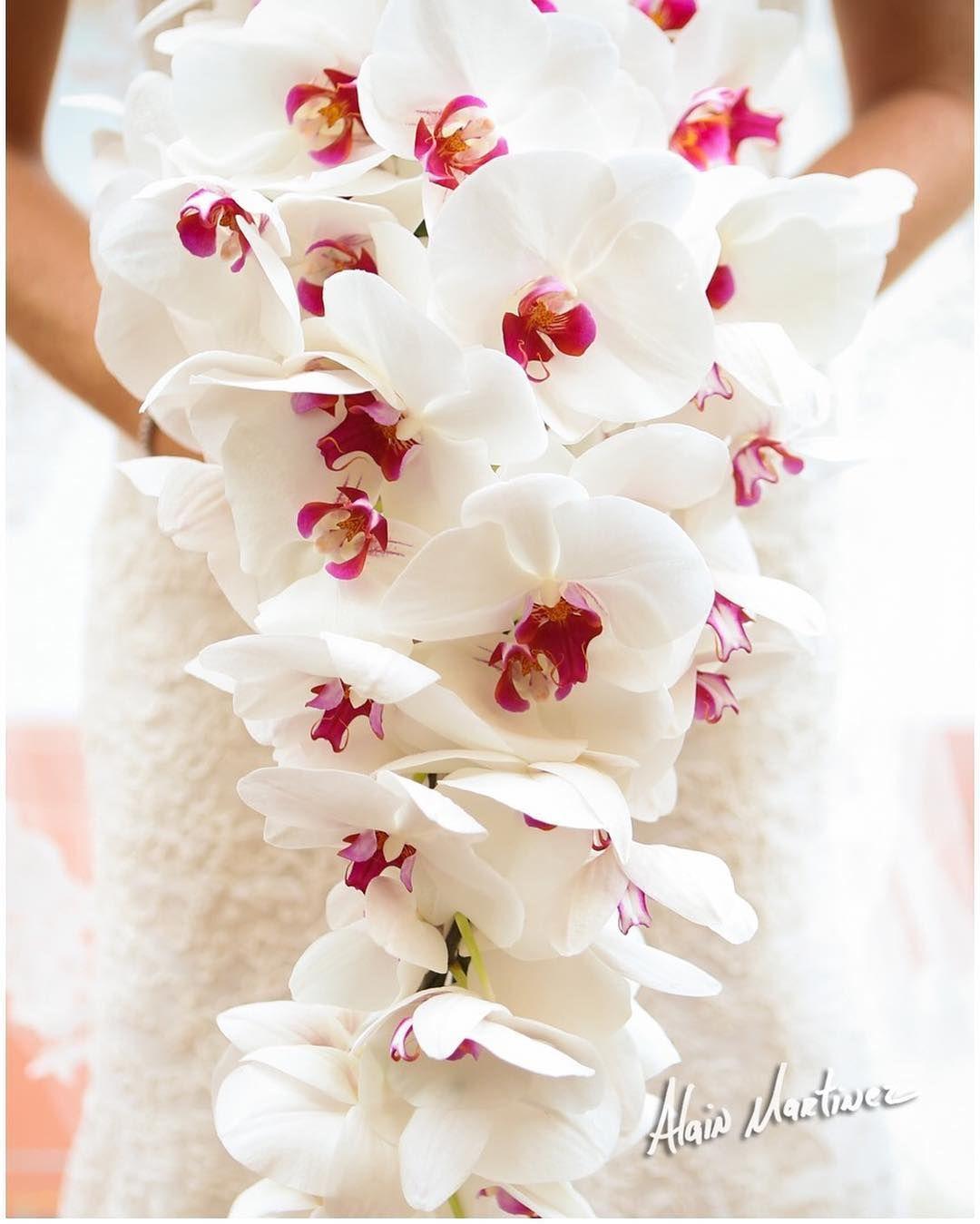 Cascading phalaenopsis orchids bouquets bridalbouquet