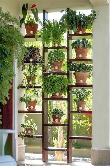 mur vgtal de plantes en pot pour faire une sparation - Grande Plante Exterieur En Pot