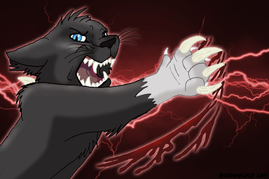 Warrior Cats Scourge Warrior Cats Scourge Wallpaper Warrior