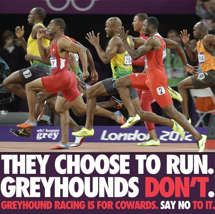 Time to end Greyhound Racing! Olympic records, Usain