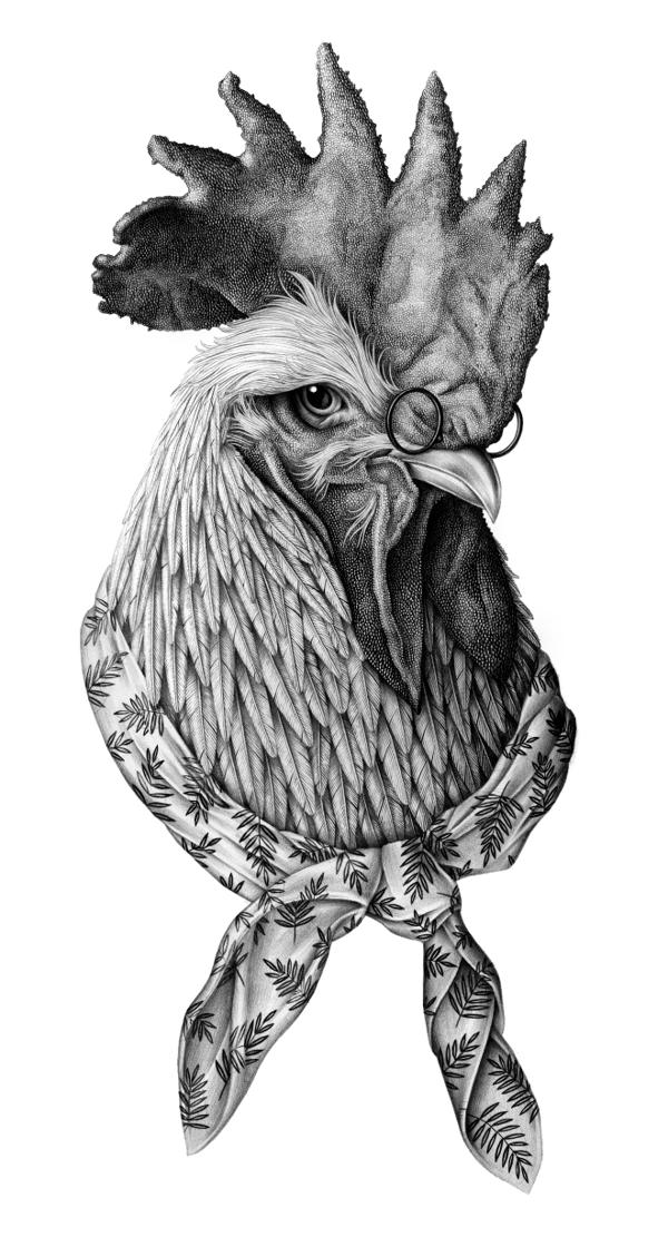Le coq Sportif by Violaine & Jeremy, via Behance