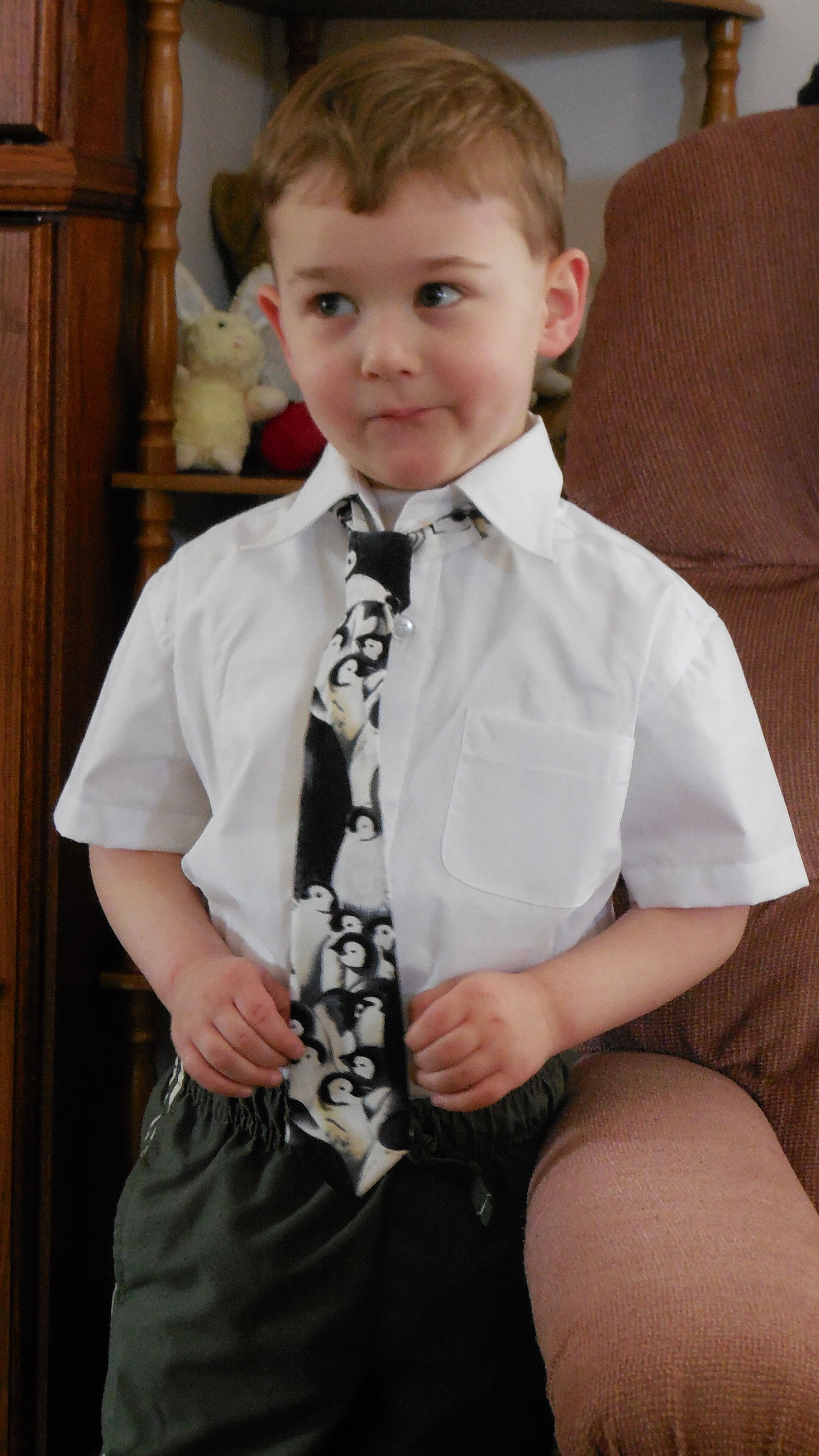 The Perfect Dress Up Shirt For Boys 12 Mos 4t Kidoneders Are