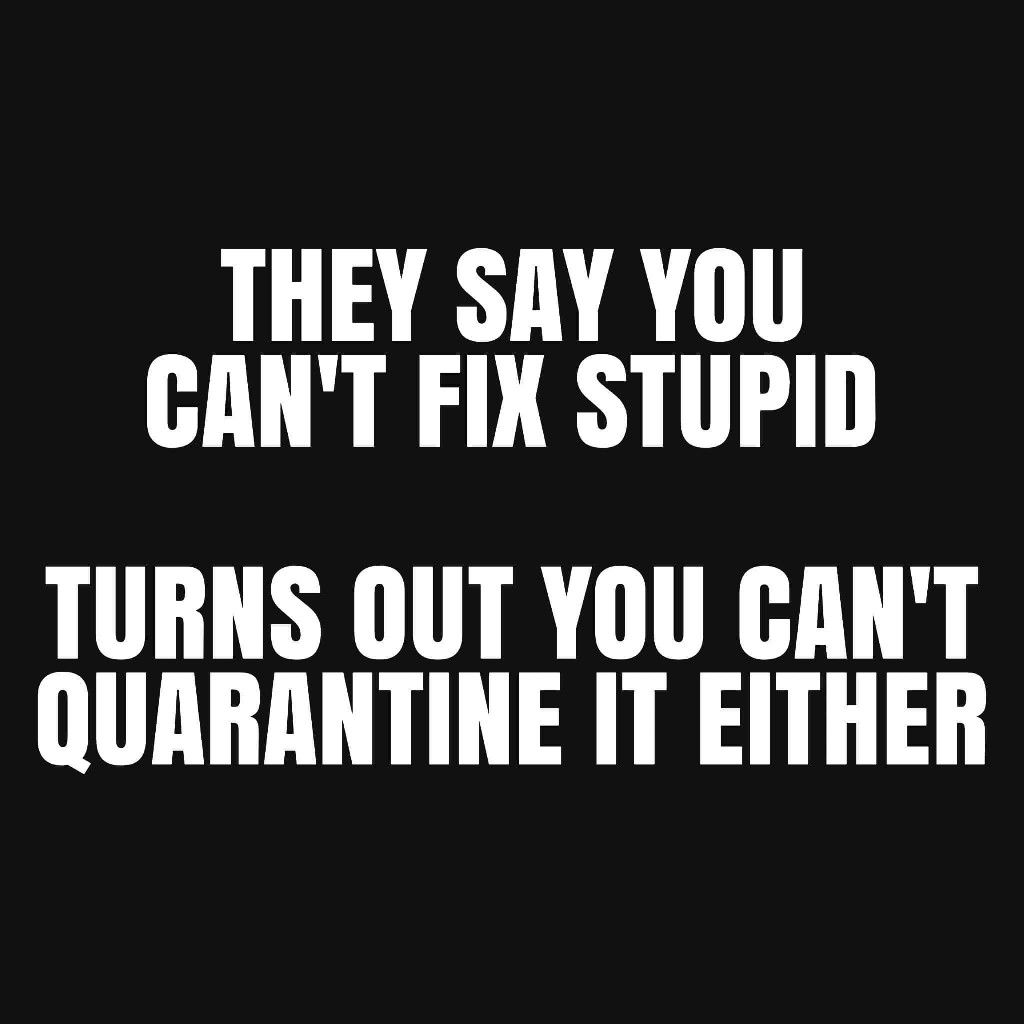 Pin By Elaine On Tee Hee In 2020 Quirky Quotes Sarcastic Quotes Funny Quotes
