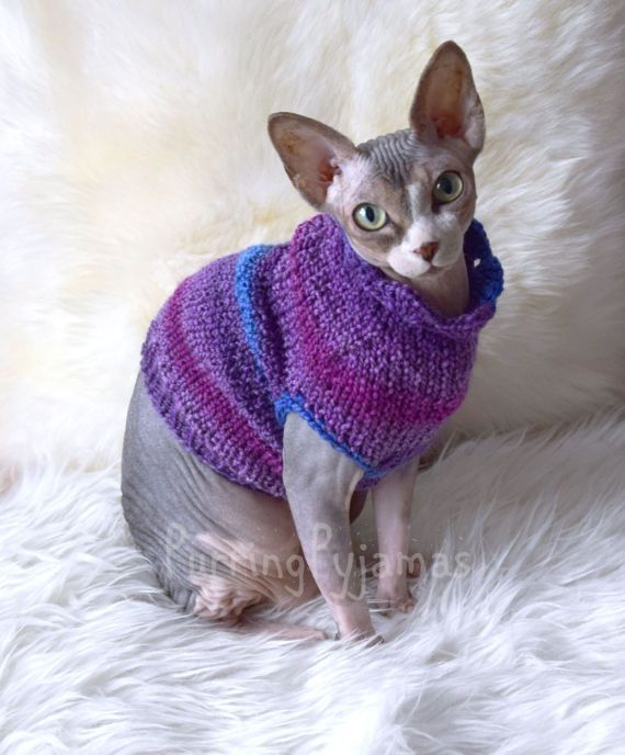 nuovo di zecca 0640b a75f6 Abiti per gatti vestiti per il gatto gatto maglione sphynx ...