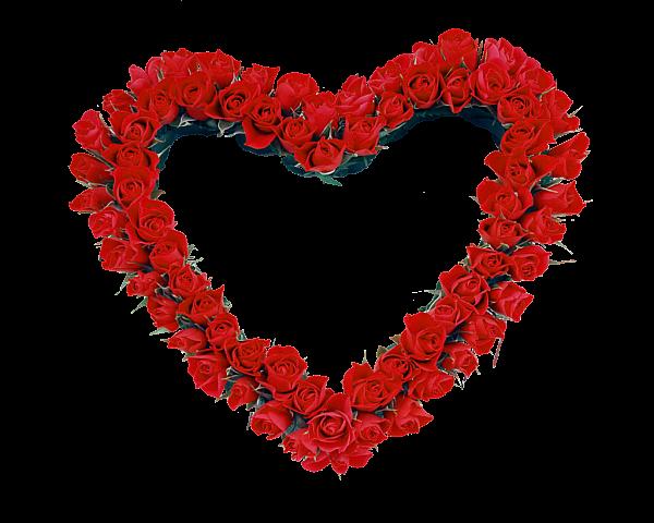 Красное сердце Розы Прозрачный Рамка